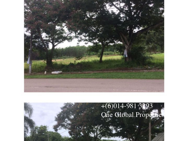 LAND FOR SALE:  Segamat, Johor photo