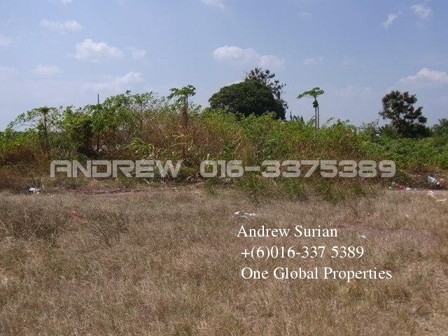 Kluang Agriculture Land  photo