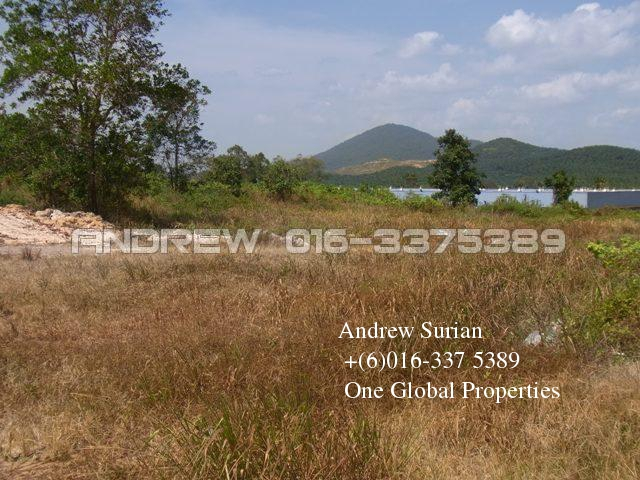 kluang agriculture land  Photo 2